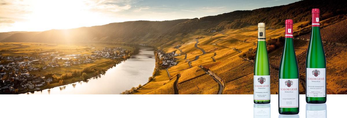 Weingut Schloss Lieser von Thomas Haag and der Mosel. Eines der Besten Weinguetern Deutschlands