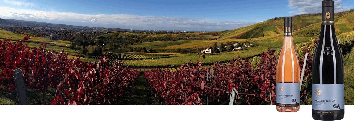 Weingut Aldinger in Fellbach genannt Winzer Des Jahres von Vinum Weinguide 2020