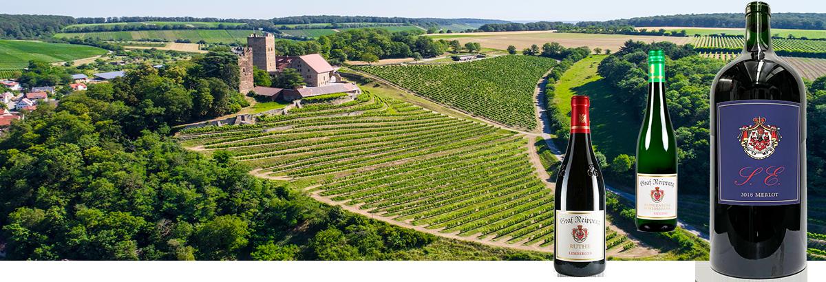 Weingut Graf Neipperg Spitzenweine aus Württemberg Lemberger GG Riesling GG Ruthe Schlossberg